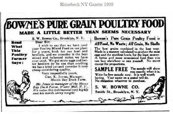 Bowne Advertisement: <em>Rhinebeck Gazette</em>, April 17, 1909