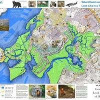 0_Gowanus_History_Map_1766_2014 updates-grab.jpg