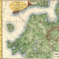 1867_Stiles_Map_of_Brooklyn,_New_York_-_Geographicus_-_BrooklynTwn-stiles-1867.jpg